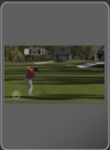 tiger_woods_pga_tour_08 - PSP - Foto 206318